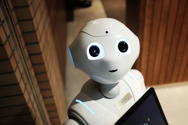 IMAGE-ROBOT